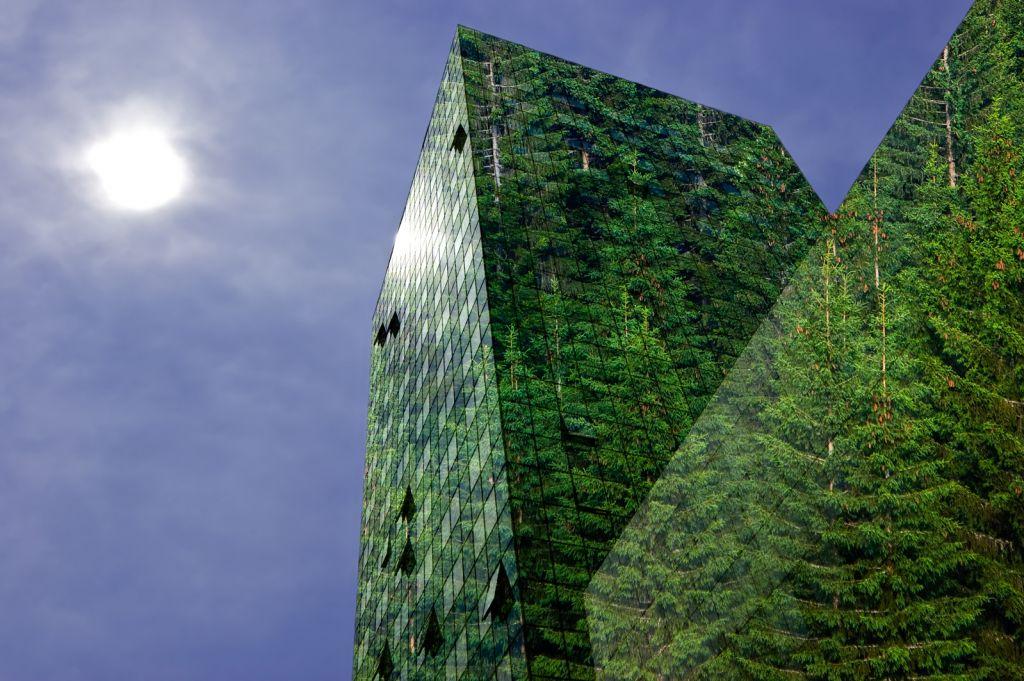 Diplomado en Gestión Ambiental