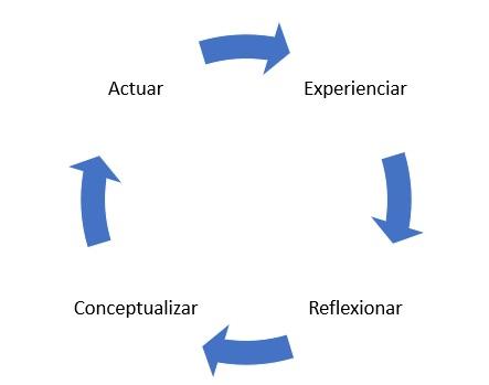 ciclo aprendizaje organizacional