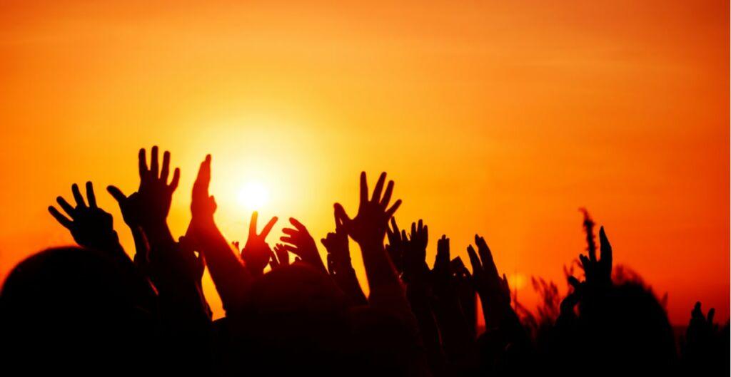 movimientos sociales, organizaciones