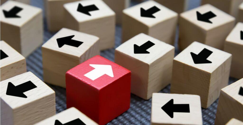 cambio, adaptación organizacional